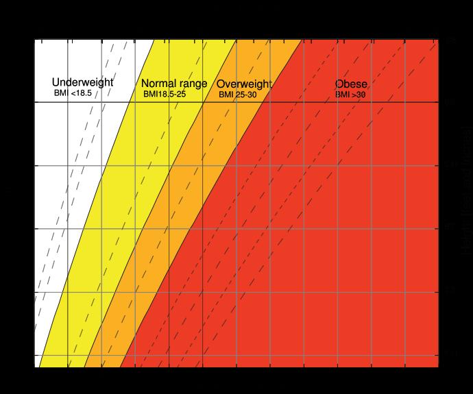 BMI chart estimates body mass index.