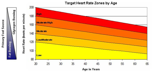 resting heart rate chart. heart rate zones by age,